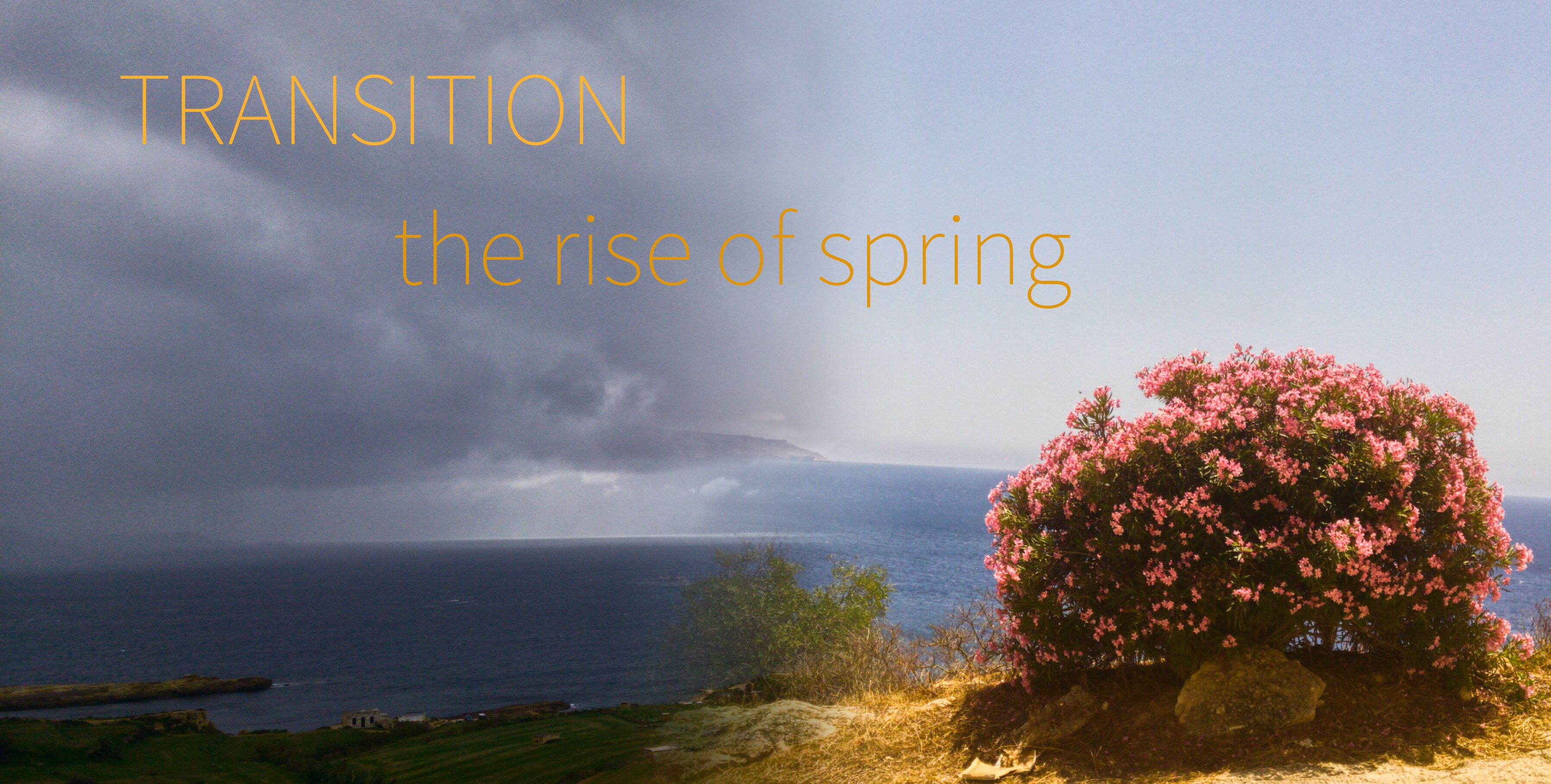 Transition - the rise of spring Yin Yoga Workshop